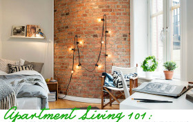 exposed brick walls, Apartment Living 101
