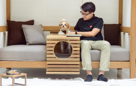pet-human bed, deesawat,