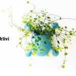 livi, biomimicry