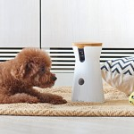 Furbo, dog treat dispenser, pet cam, interactive dog camera, Tomofun