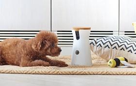 Furbo, dog treat dispenser, pet cam, interactive dog camera, Tomofun