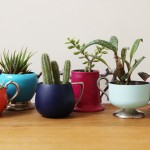 Courtney Dawley, found by a prop stylist, greenpoint designer, vintage planters