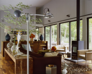 Incorporated Architecture & Design, Sixteen Doors House, Airbnb, living room