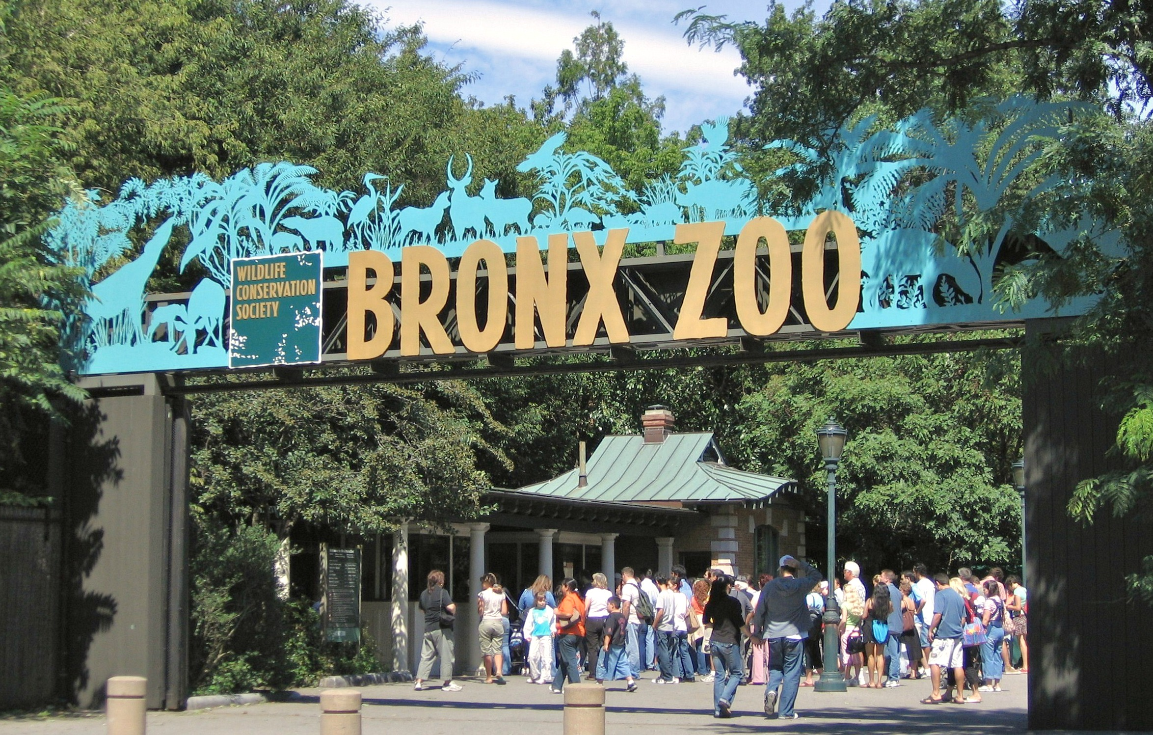Image result for What to do in Belmont faviana bronx zoo