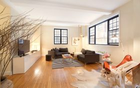 102 East 22nd Street, living room