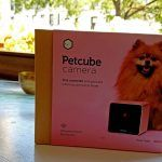 petcube, petcube app, pet camera, wifi pet camera, cat camera, dog camera