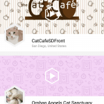 public pet camera, camera sharing, petcube play, petcube, petcube app, pet camera, wifi pet camera, cat camera, dog camera
