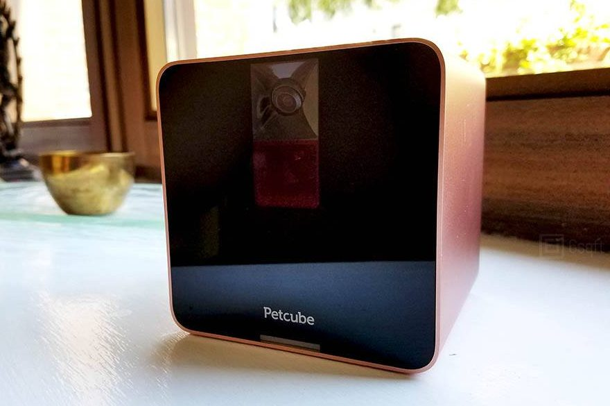 Play with your pets and others' pets with Petcube's interactive camera