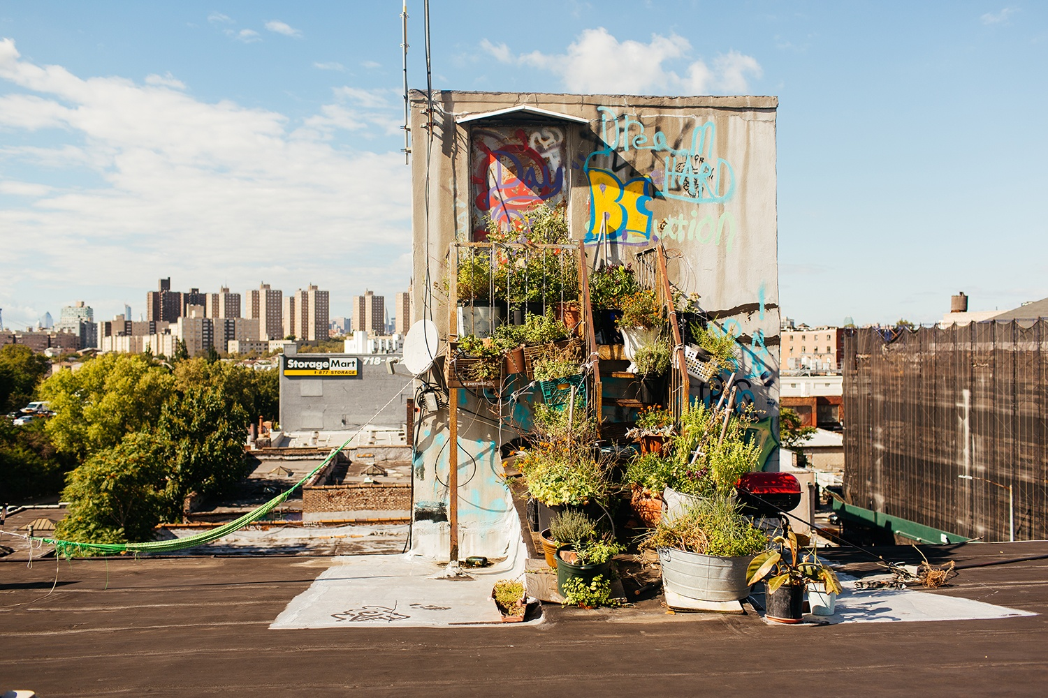 Artist-Chad-Lewine-Brooklyn-Navy-Yard-Loft-roof-garden