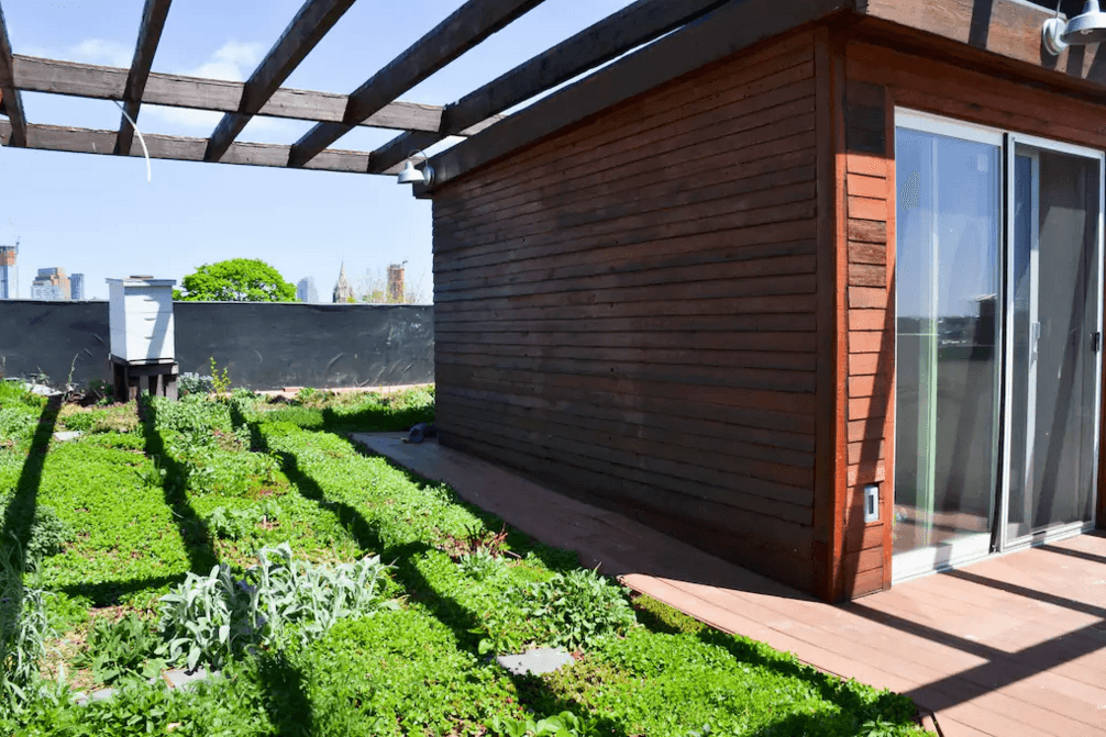 eco-triplex-brooklyn-green-roof