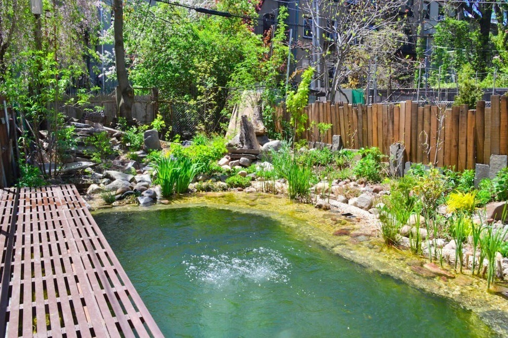 Brooklyn 39 eco triplex 39 with natural swimming pool and for Sustainable swimming pools
