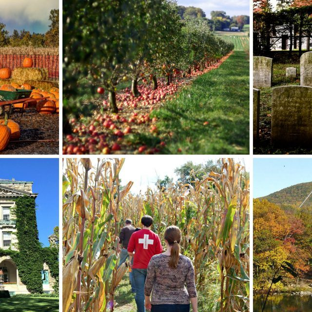 The best day trips this fall, from cemetery tours to historic mansions to corn mazes