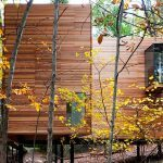 Steven Holl, wooden art gallery, T Space, Dutchess County, cedar facade, woodland art gallery, wooden cabin,