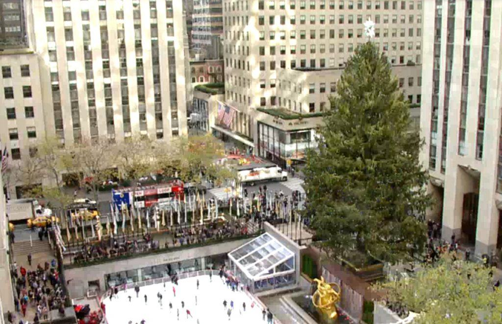 Watch a live feed of the Rockefeller Center Christmas Tree; new Union  Square Cafe opens next week | 6sqft - Watch A Live Feed Of The Rockefeller Center Christmas Tree; New