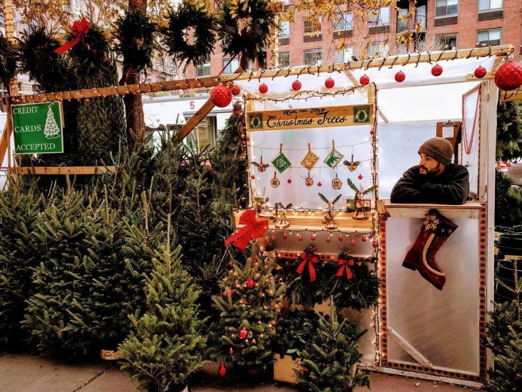Christmas Tree Prices Rise As Competition And Soaring