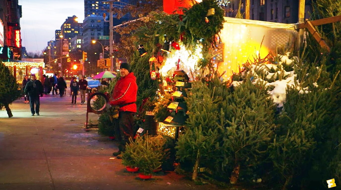 New Documentary Tree Man Explores The Lives Of Nyc S Christmas