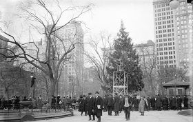 madison-square-park-first-christmas-tree