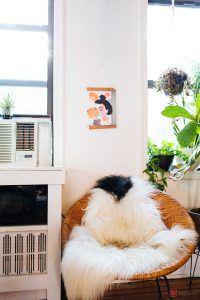 alexandra-king-park-slope-brooklyn-nyc-apartment-mysqft