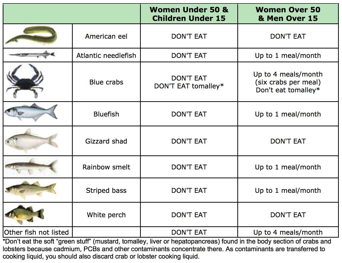 gowanus-canal-fish-chart