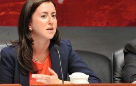 nily rozic nyc assemblywoman