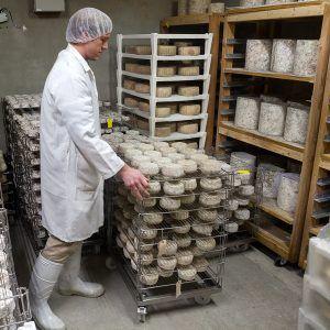 Murray's Cheese, NYC cheese caves, Rob Kaufelt, James and Karla Murray