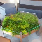 living table, Habitat Horticulture