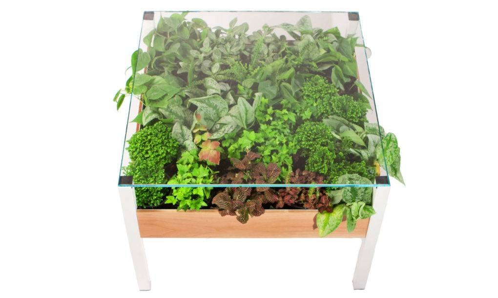 The Living Table: A self-regulating planter-table perfect for city living