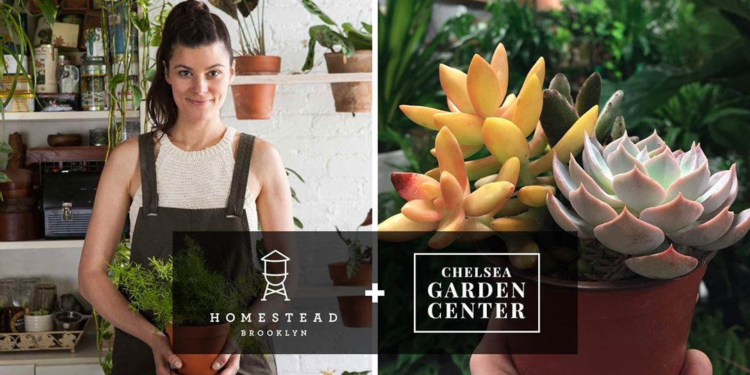 12 Places For Gardening Plant And Flowers Classes In Nyc 6sqft
