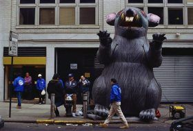 scabby the rat, union rats, new york unions