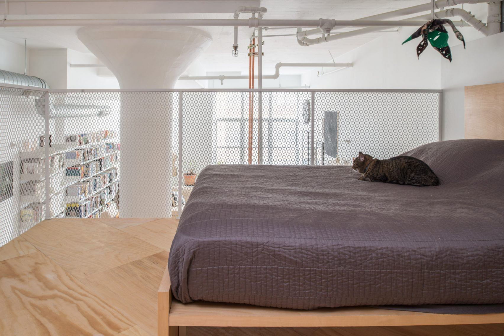 New Affiliates, Bed-Stuy, loft renovation, plywood