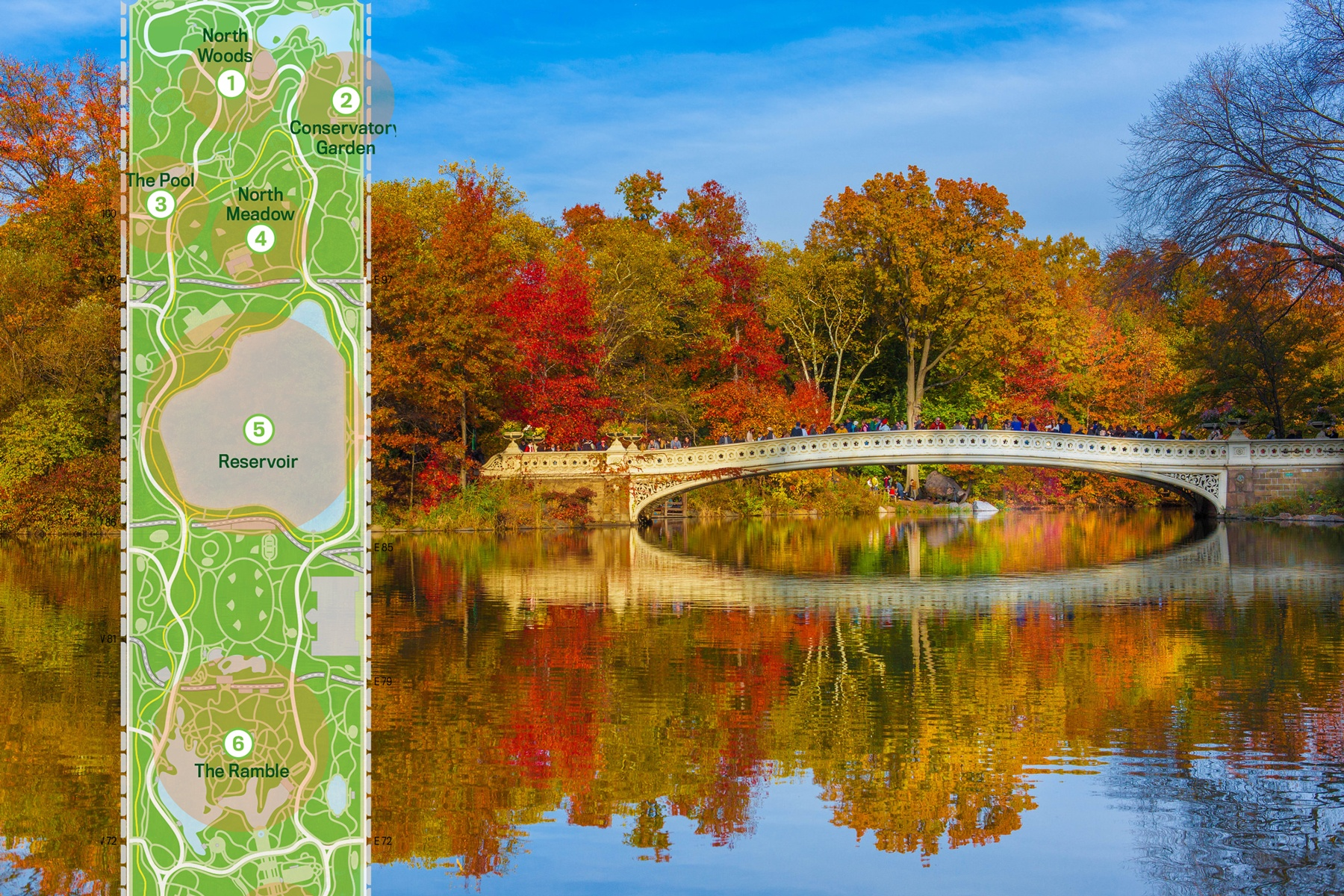 MAP Find The Colorful Fall Foliage Of Central Parks Trees - Us fall color map