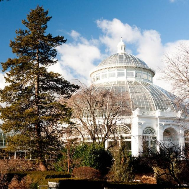 Five chances to live near the New York Botanical Garden from $1,450/month