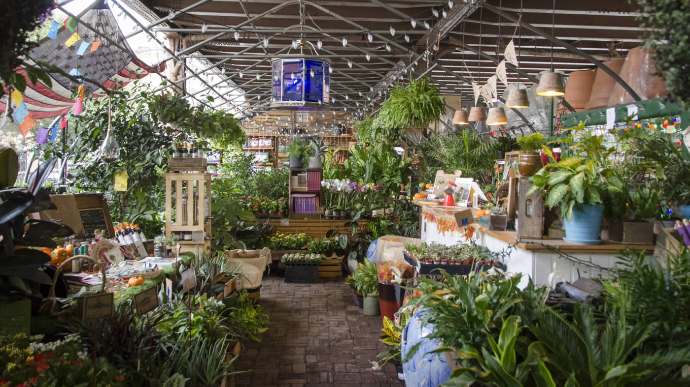 the 10 best plant shops in nyc 6sqft. Black Bedroom Furniture Sets. Home Design Ideas