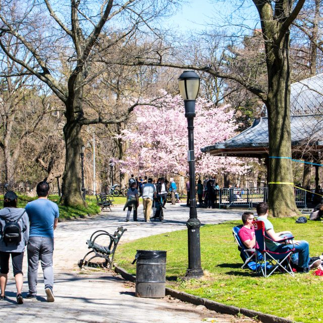 Discover Prospect Park through these interactive, guided tours