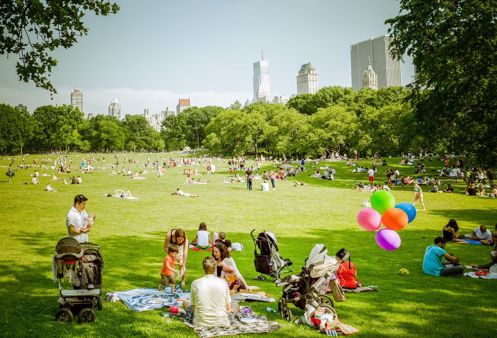 Central Park, Sheep Meadow