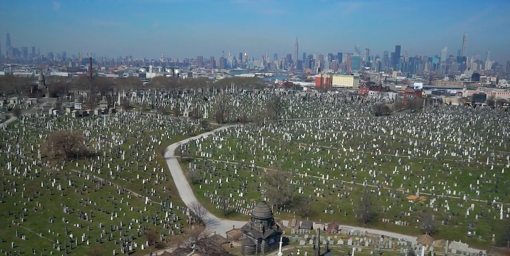 calvary cemetery, calvary cemetery queens, nyc cemetery project