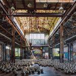 Yayoi Kusama, Narcissus Garden, MoMA PS1, Fort Tilden