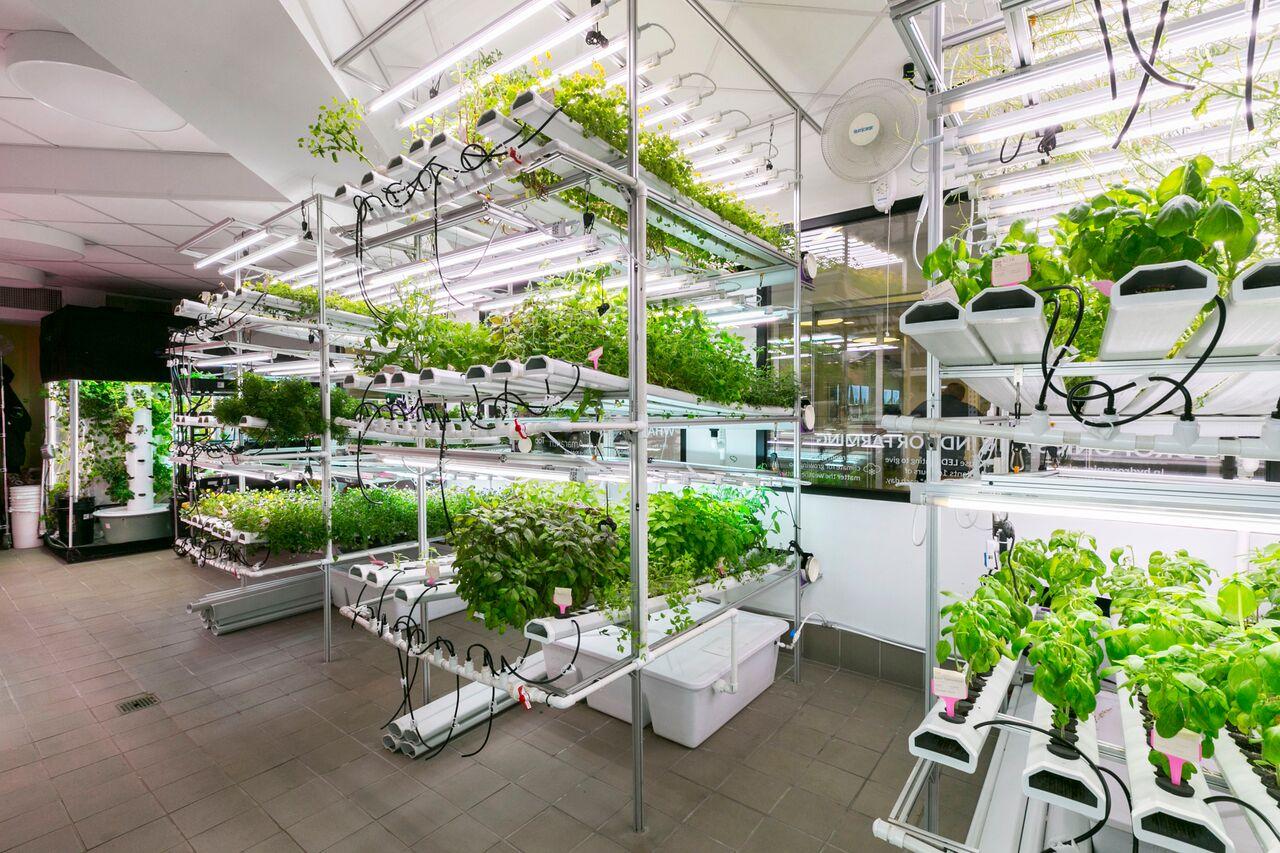 Where I Work: Chef Bill Telepan takes us inside a 'farm-to ...