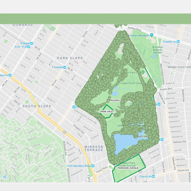 Interactive map lets you explore Prospect Park's 200 tree species