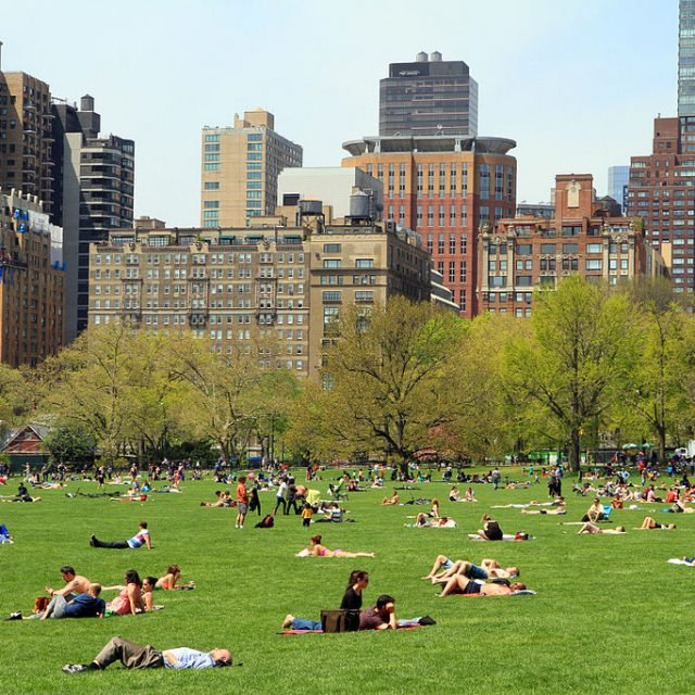 To live across from Central Park, you'll pay 25% more than every bordering neighborhood