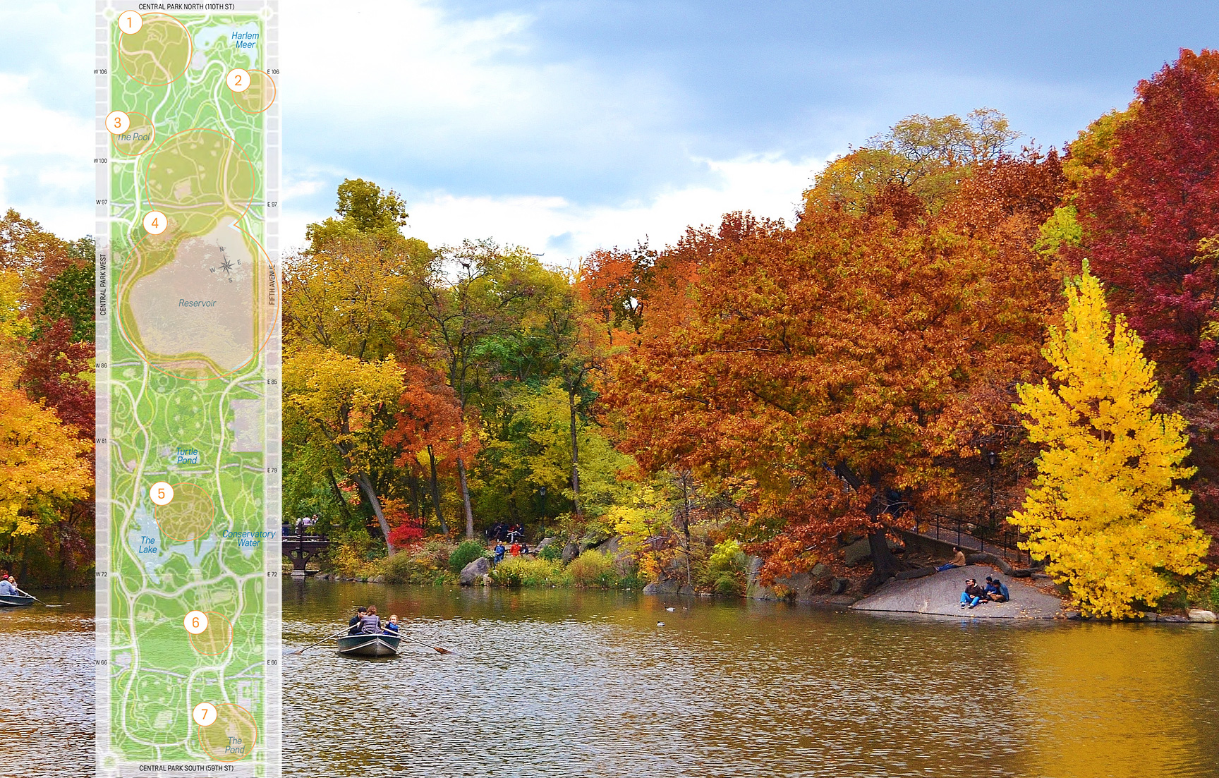 where to find fall foliage in central park 6sqft
