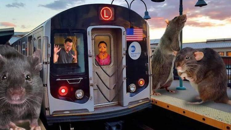 L train shutdown haunted house and nightclub brings transit terror to Bushwick