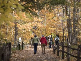 NYBG, fall foliage, events