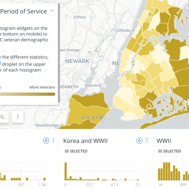 This map shows the diversity of NYC's veterans in every neighborhood
