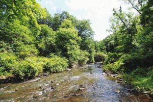 hudson valley, boho cottage, airbnb, cabin, cool listings, getaways, upstate