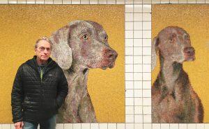 23rd Street subway station, William Wegman, Weimaraner dogs, MTA Arts for Transit, NYC subway art, subway mosaics