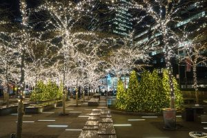 tis the season new york, betsy pinover schiff, urban lens