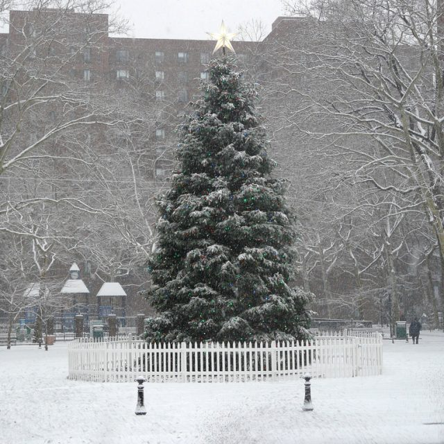 What are the chances of a White Christmas in NYC this year?