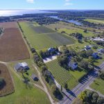 bedell cellars, corey creek, vineyard, cutchogue, michael lynne, cool listings, north fork