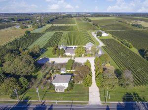 bedell cellars, corey creek, vineyard, cutchogue, michael lynne, cool listings, north fork